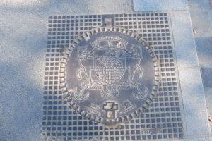 Siemper Fidelis drain grate DSCF0625